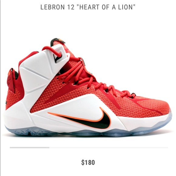 check out d2b0f dd4f5 Lebron James 12's